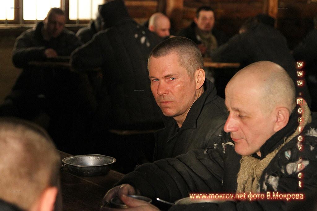 Фото Актер - Муляр Дмитрий роль Левицкий в сериале «Декабристка».