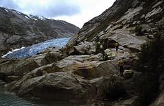 Norwegen 1998 (215) Nigardsbreen