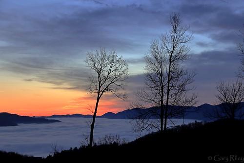 blueridgeparkway blueridge mountain sunrise dawn fog foggy northcarolina ncarolina predawn valley beautiful gorgeous