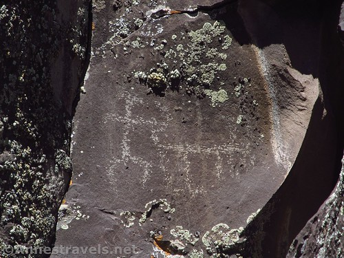 Lichen grows over some the rocks and around some of the petroglyphs at Nampaweap in Grand Canyon-Parashant National Monument, Arizona