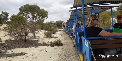 Joyride kingparks trem