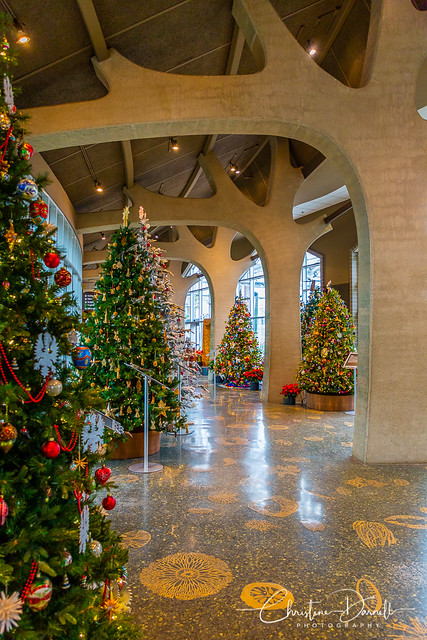 FMG Christmas Trees from Around the World 2018