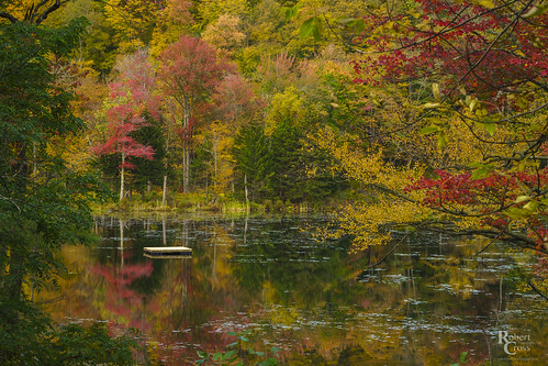 a7rii alpha emount greenmountains ilce7rm2 newengland plymouth sony vt vermont autumn dock fall foliage forest fullframe lake landscape leaves mirrorless reflection reflections trees water fe85mmf18
