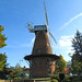 The windmill at Rayleigh, Essex