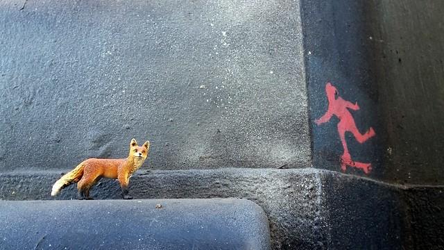 Camden fox