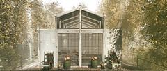 Carpenter shed house....