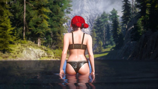 The Witcher 3 - Triss Butt