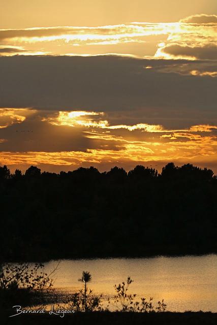 Lac au couchant | lake at sunset, Arjuzanx, Réserve Nationale de Chasse et de Faune Sauvage