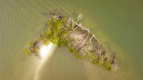 mavic platinum dji water gold coast drone