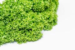 Lettuce salad leaves