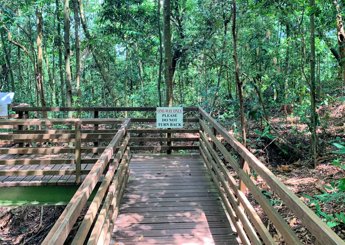 Hiking in Singapore: No Turning Back