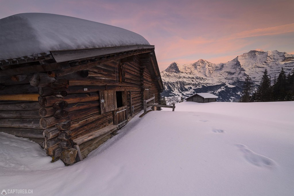 Alp - Sulwald