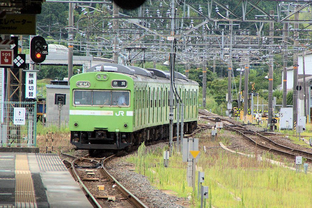 DSC09732 -1