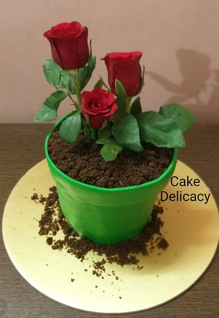 Edible Flower Pot Cake by Cake Delicacy