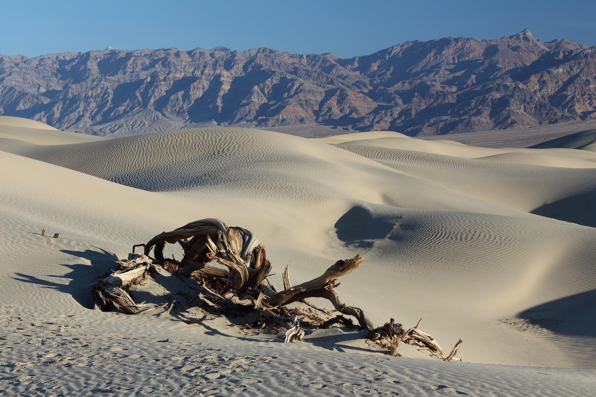 desert-1443127_1920