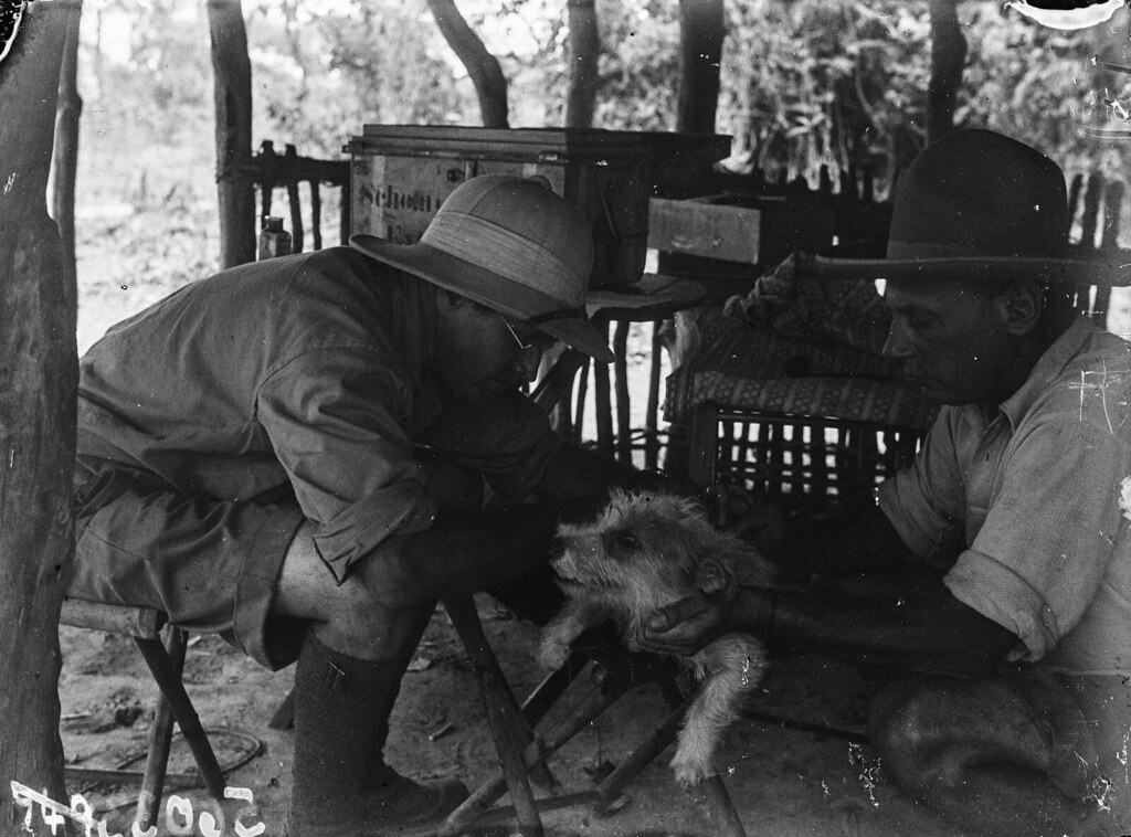Катаба. Собака по кличке Пеппи с двумя участниками экспедиции