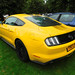 Hull '18 - Ford Mustang 5.0 GT (4)
