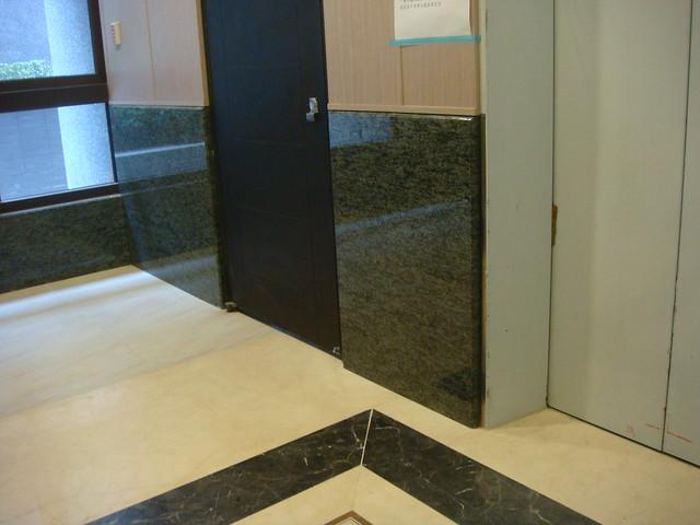 DSC01227 橄欖綠大廳電梯廳牆面-宸寶西園路極真, Sony DSC-T200