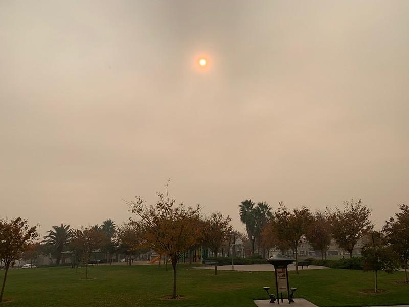Not fog