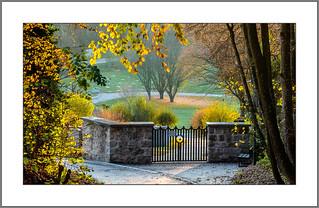 Der Weg zum Friedhof (The way to the cemetery)