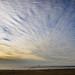 Cirrocumulus Clouds over Ocean Beach, SF, CA