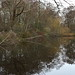 Bushy Park_Dec18_06