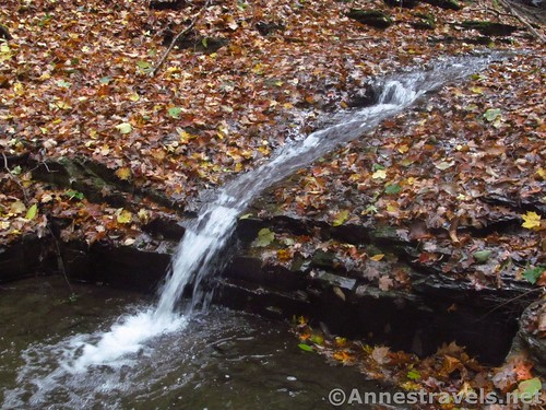 One of the falls in the upper gorge of Barnes Gully, Onanda Park near Canandaigua, New York
