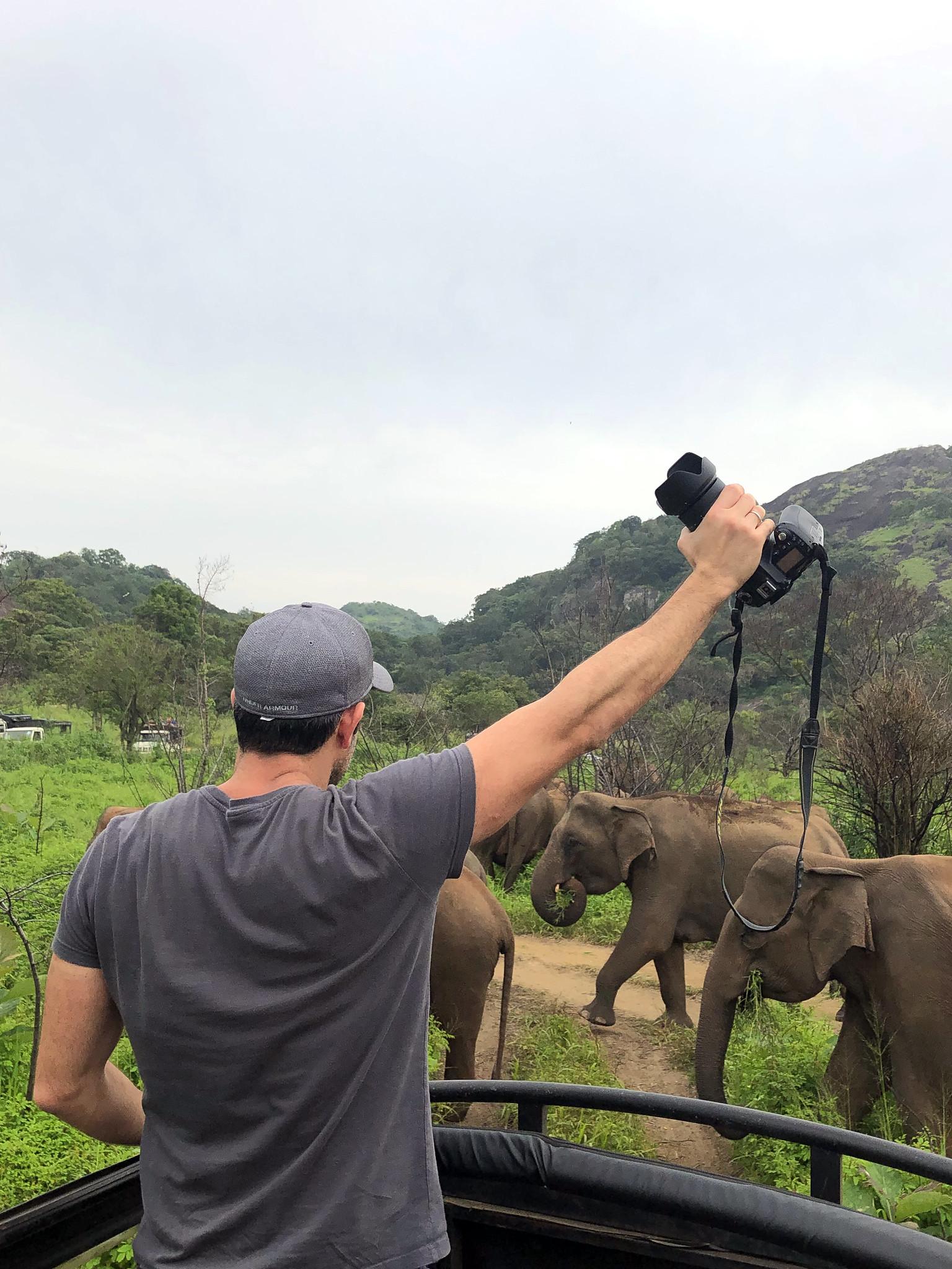 VER ELEFANTES SALVAJES EN SRI LANKA ver elefantes salvajes en sri lanka - 46921986532 b5067631fd k - Ver elefantes salvajes en Sri Lanka