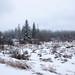Blacfoot-winter-68.jpg by Waskahegan Trail Association