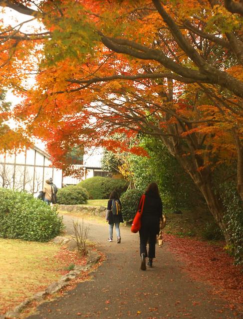 autumnpath2