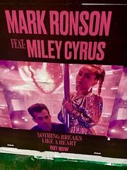 Mark & Miley - NYC