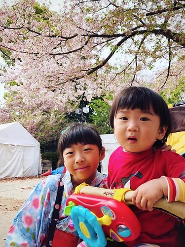 櫻花樹下的合照