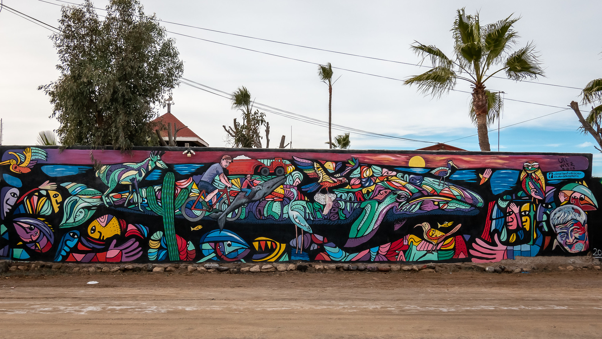 Guerrero Negro - Basse-Californie du Sud - [Mexique]