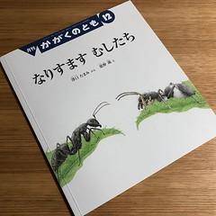 これ すごいです アリグモが主人公 舘野鴻さん画 折込付録の図版も良いです  クモ  たくさんのふしぎ