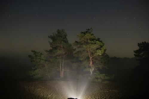 Maasduinen Fog 1