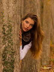 La bella del bosque