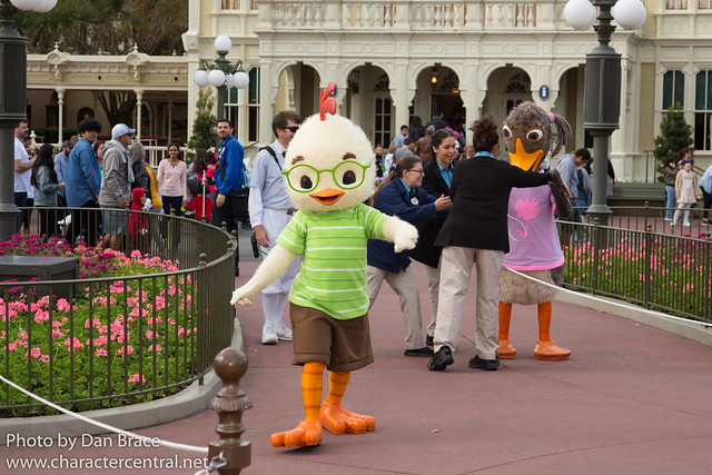 Meeting Chicken Little and Abby Mallard
