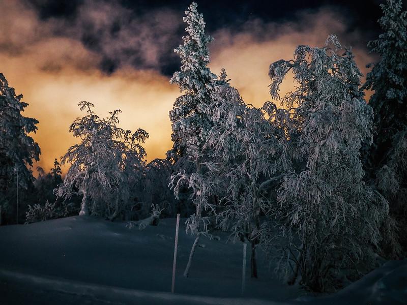 PC295282,PC295249, snow, lumi, lappi, lapland, northern finland, pohjois suomi, saariselkä, saariselka, maisema, scenery, winter, talvi, luonto, nature, matkat, travel, kaunispää, huippu, top of the kaunispää, talviyö, polar night, kaamos, winter night, metsä, forest,