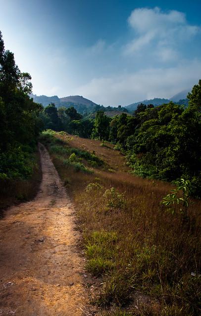 A Path By The, Canon EOS 40D, Canon EF-S 17-55mm f/2.8 IS USM