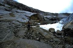 Norwegen 1998 (231) Nigardsbreen
