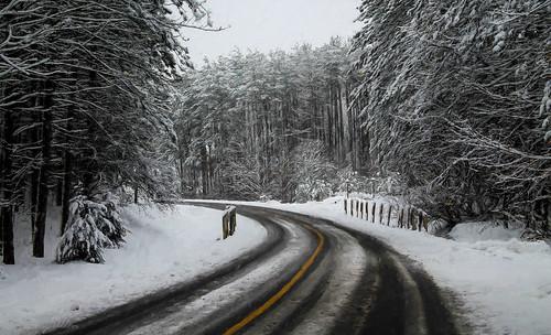 Into a Winter Wonderland