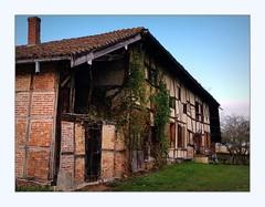Ferme bressane - Photo of Montracol