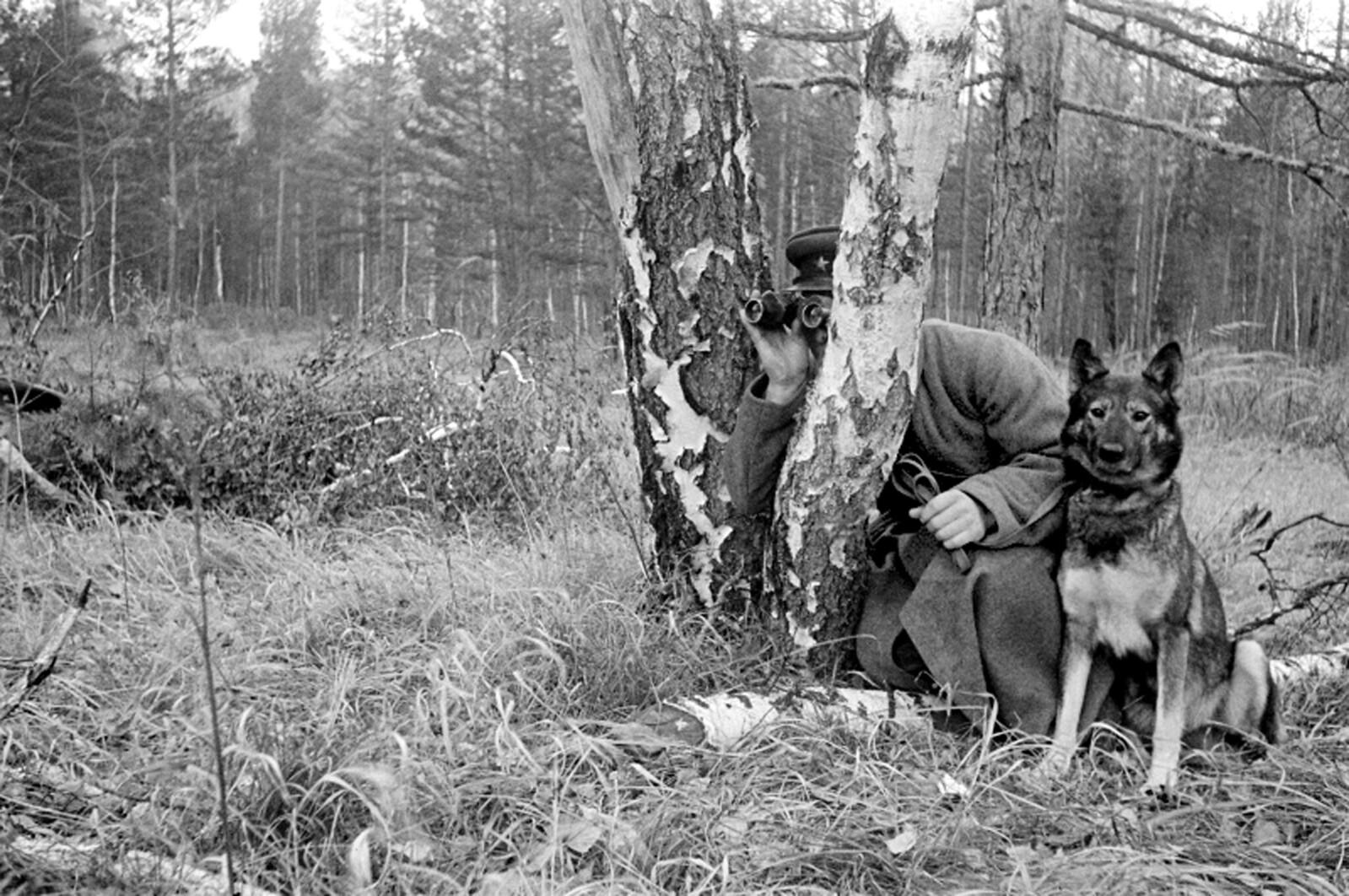 1940-е. (начало). Пограничный наряд со служебной собакой.