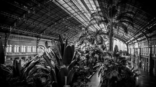 Atocha Station, Madrid