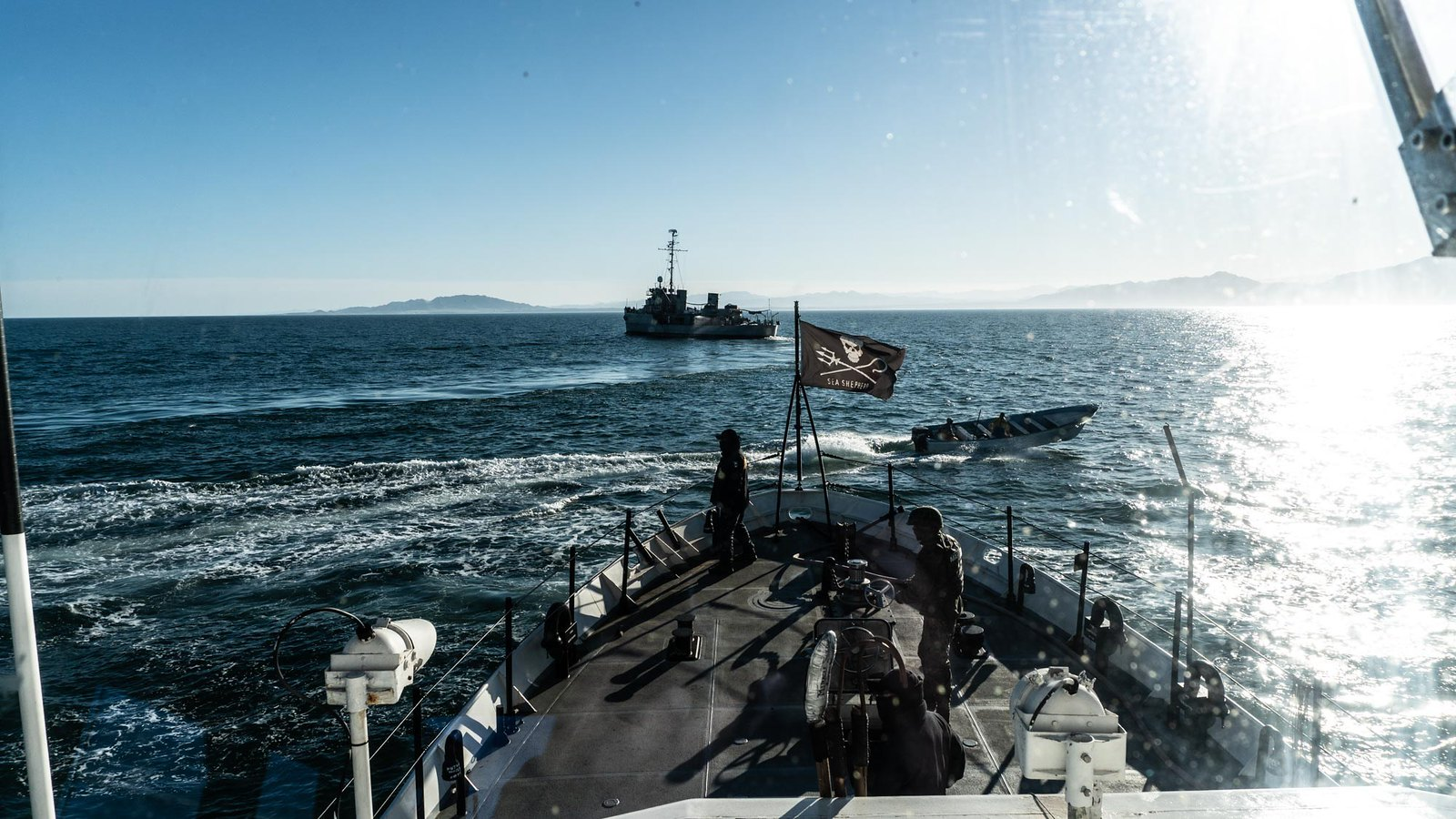 Sea Shepherd Ship Attacked in Vaquita Refuge