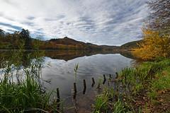 Couleurs d'automne sur l'étang de Baerenthal - Photo of Lichtenberg