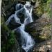 Salts d'aigua al riu Pollós, Arinsal (Andorra)