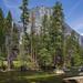 El Capitan - Yosemite Park