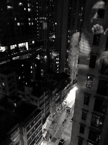 The world outside my window