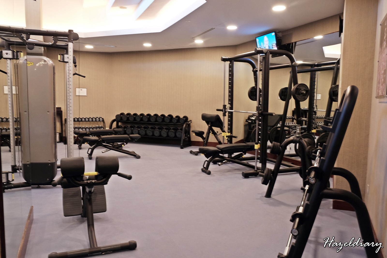 Swissotel Merchant Court Fitness Centre